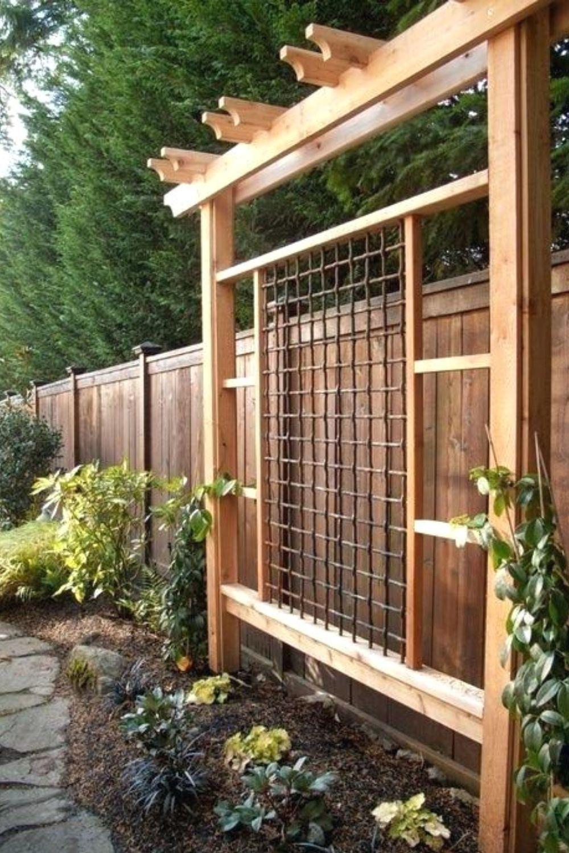 Creative Trellis Ideas To Add Beauty to Your Garden