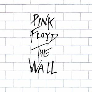 Pink Floyd Comfortably Numb The Wall Pink Floyd Album Covers Pink Floyd Albums Album Cover Art