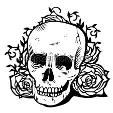 Resultado De Imagen Para Calavera Con Flores Dibujo Sombras