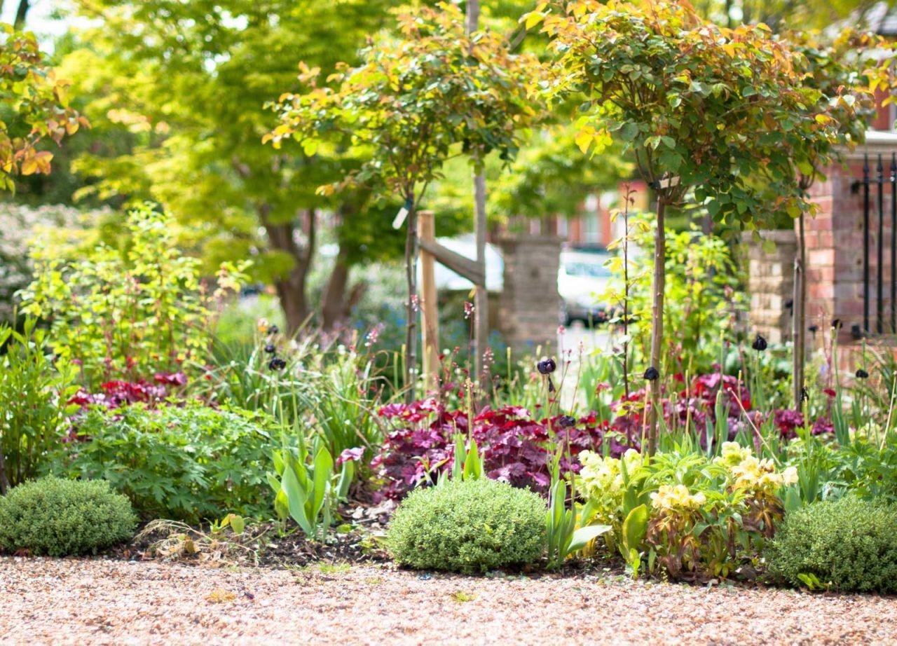 View of a front garden by Kate Eyre Garden Design KEGD Gardens