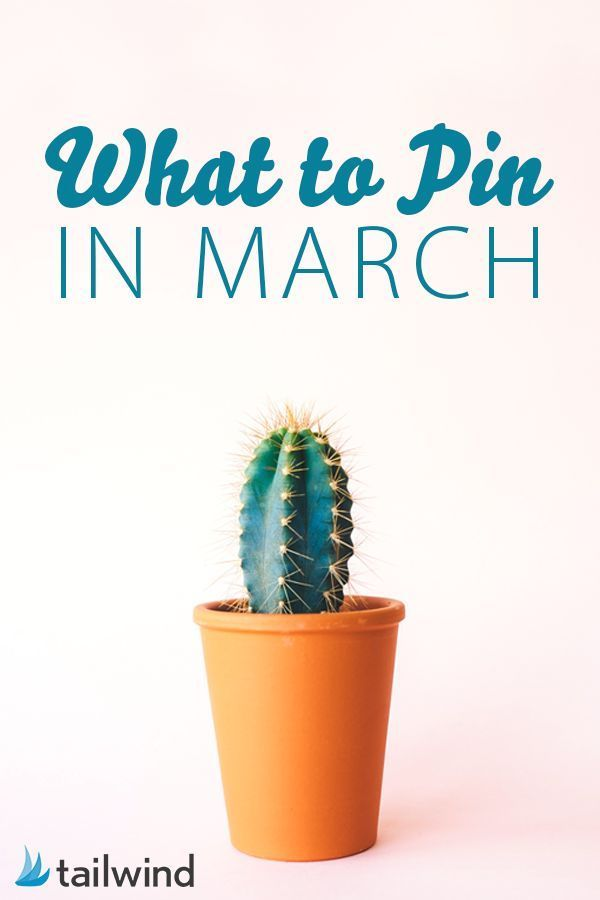 Don't leave your Pinning strategy to luck! Learn what to Pin in March based on what performed last year. via /tailwind/