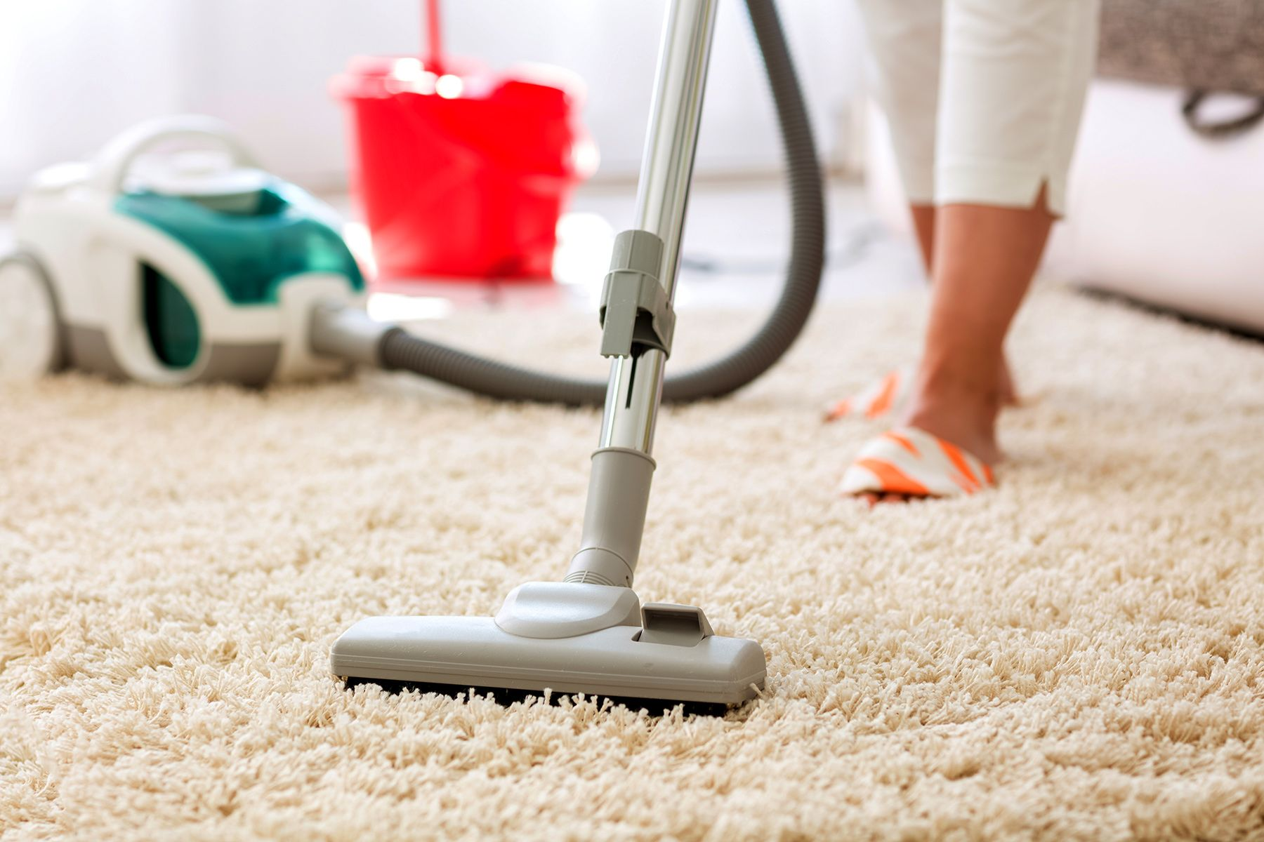 Flea Control In Your Home In 2020 Cheap Carpet Cleaning Residential Cleaning How To Clean Carpet