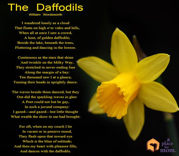 Poem: The Daffodils | Poem and Inspirational