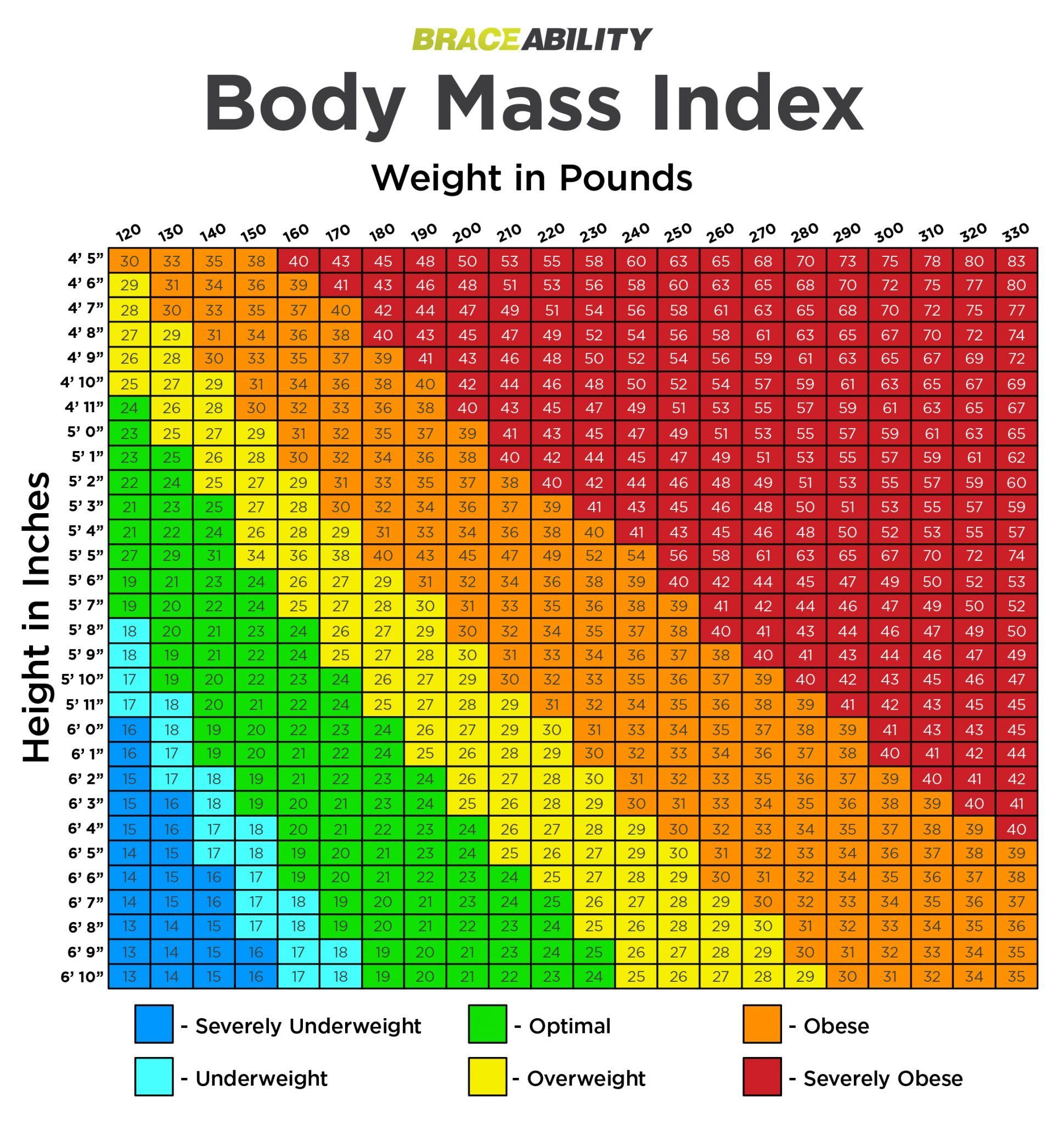 Pin On Body Mass
