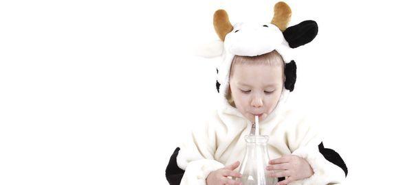 La vérité sur le lait: faut-il en boire ou non?