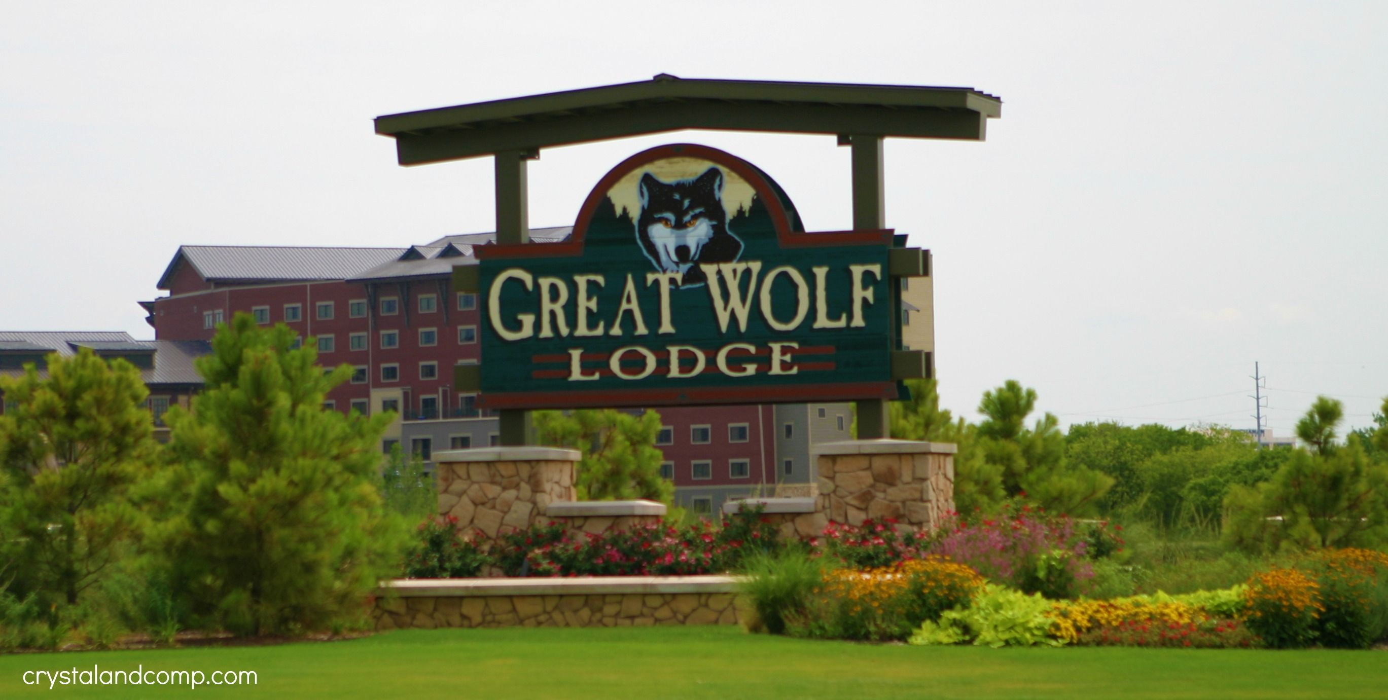 local dfw: great wolf lodge in grapevine texas | wolf lodge