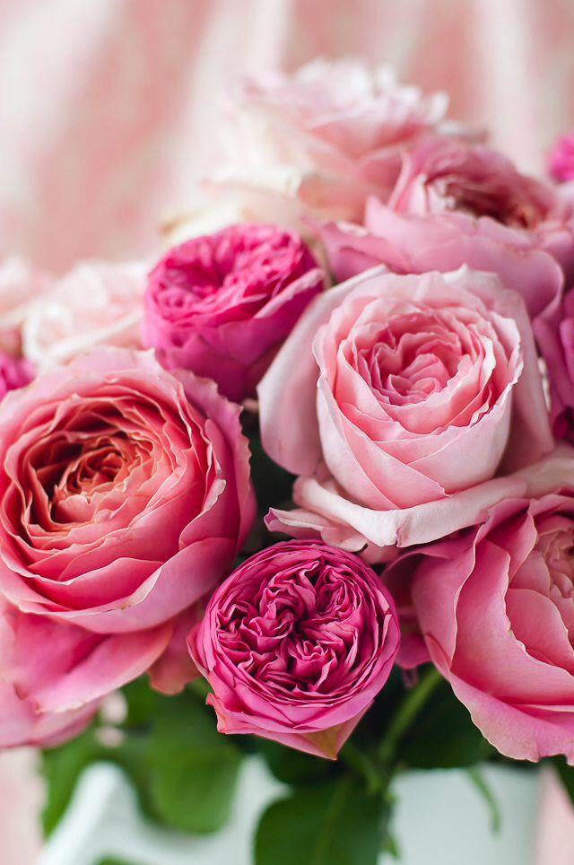 pik rose bouquet Flowers Pinterest Rose bouquet, Flowers and