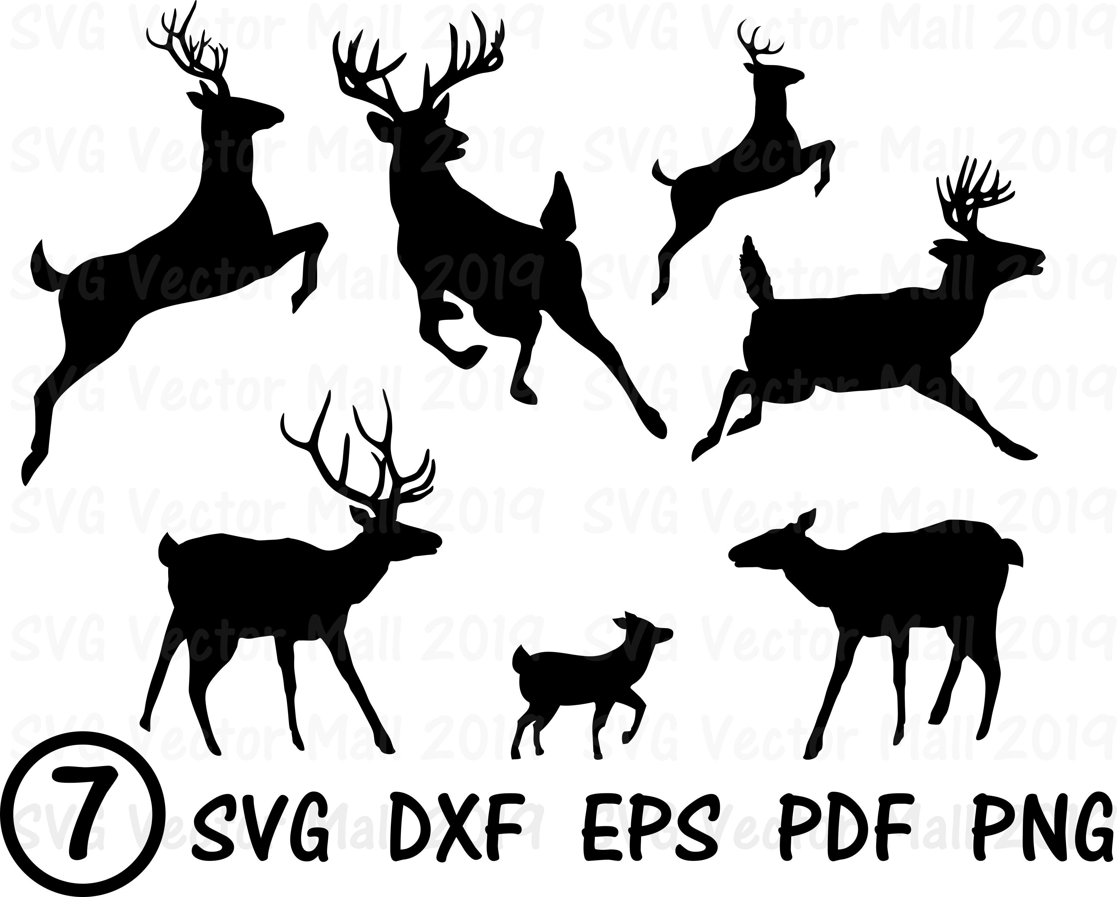 Deer, Deer Silhouettes, Stag, Doe, Fawn, deer SVG