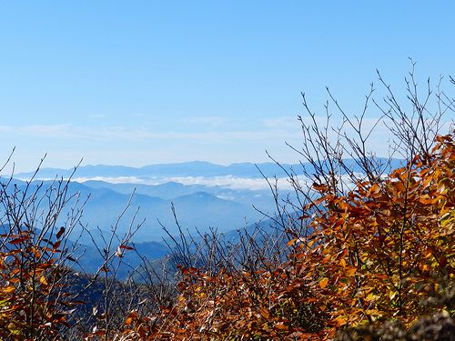 Overlook at Sweat Heifer Trail, Great Smoky Mountains National Park, 2013