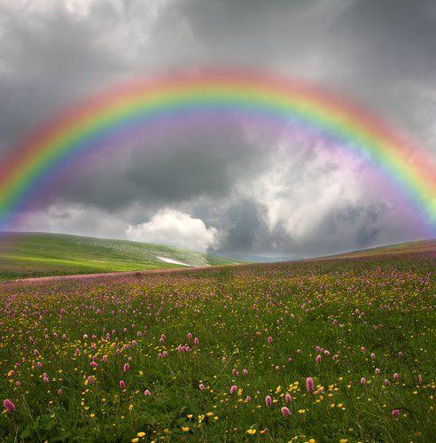 God Put A Rainbow In The Sky!