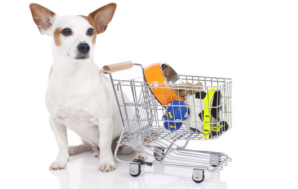 Pin on Must Have Dog Supplies