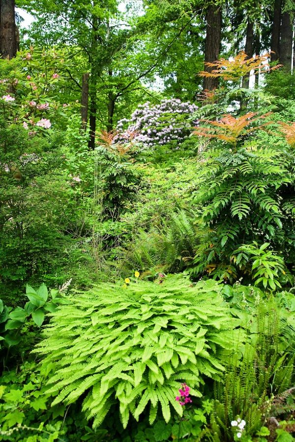 Amazing Landscaping Ideas For Small Budgets: Amazing Hillside Landscaping Design Ideas