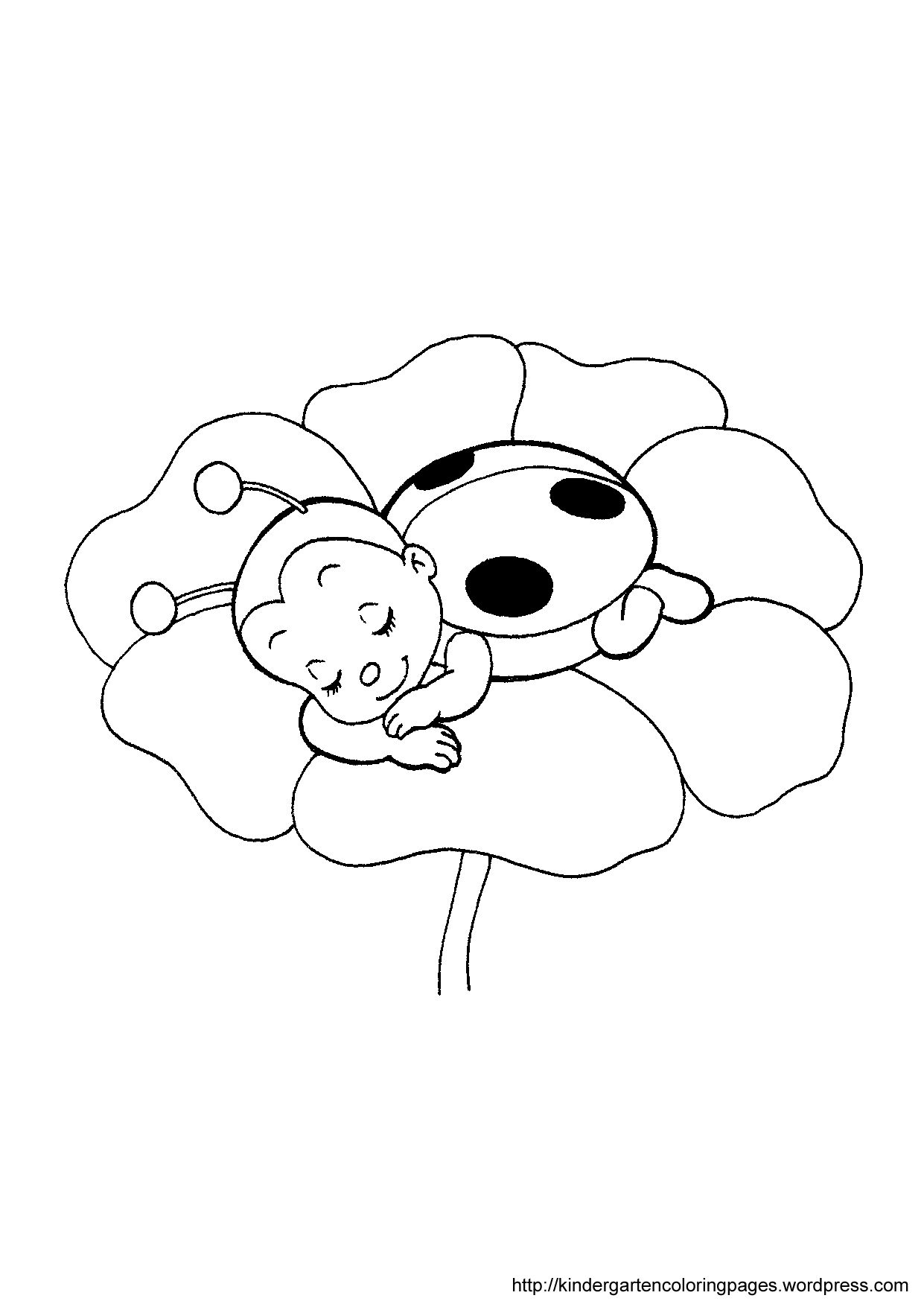 Ladybug coloring pages ladybug on flower coloring page filigran