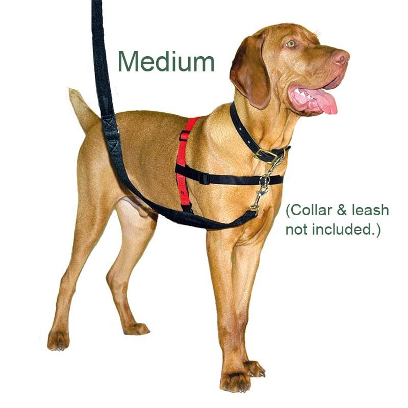 Halti Harness No Pull Harness Multi Functional And With Padding