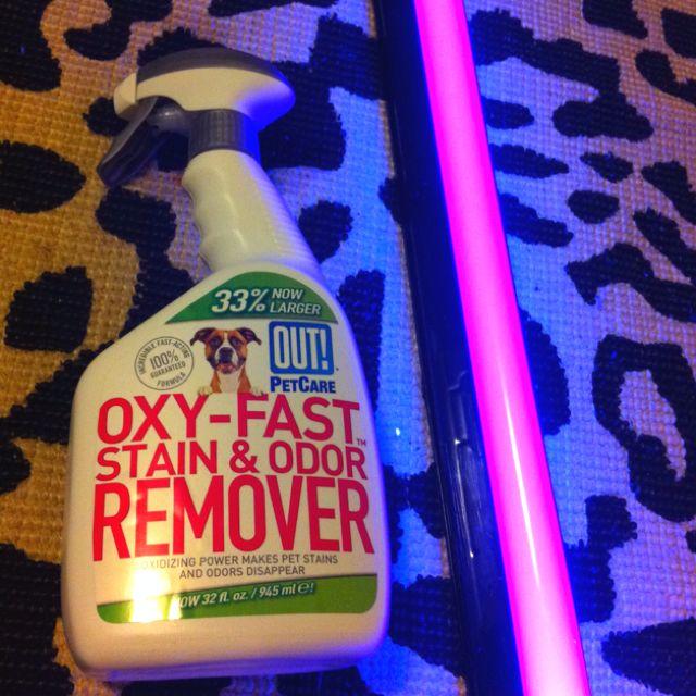 Best 25 Pet Urine Cleaner Ideas On Pinterest Cat Urine