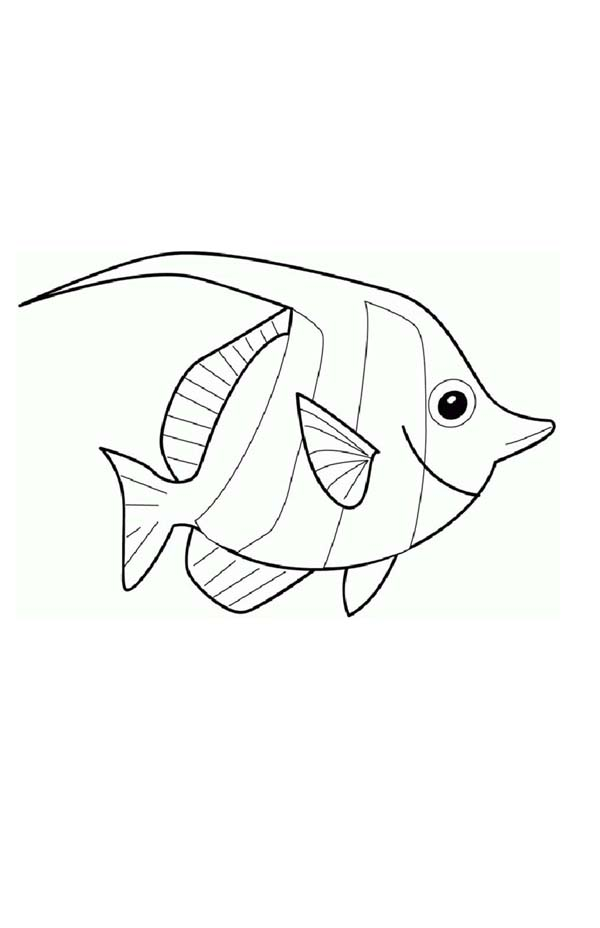 Pin By Coloringsky On Angel Fish Coloring Pages Fish Coloring Page Angel Drawing Angel Coloring Pages