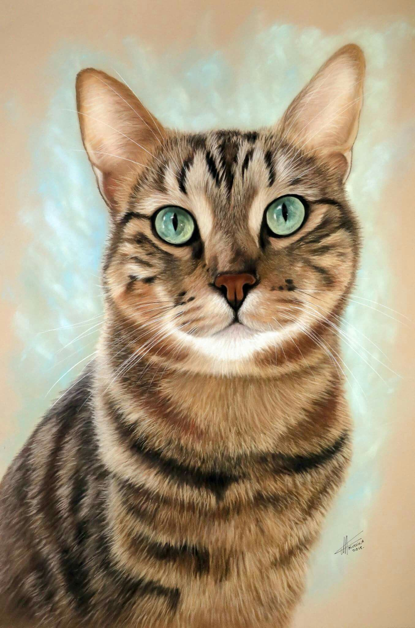 Sample Easy To Draw This Cat Painting Cat Painting Cat Portraits Cats Illustration