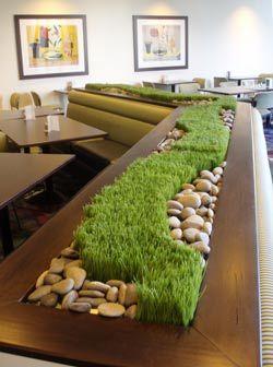 cool grass arrangement