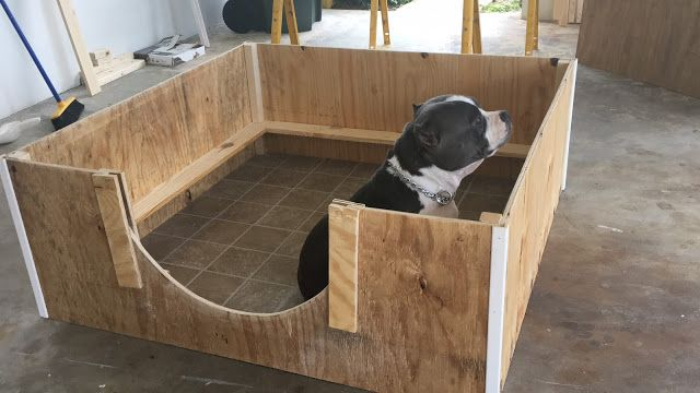 How To Create A Quick Inexpensive Whelping Box Bully King Magazine