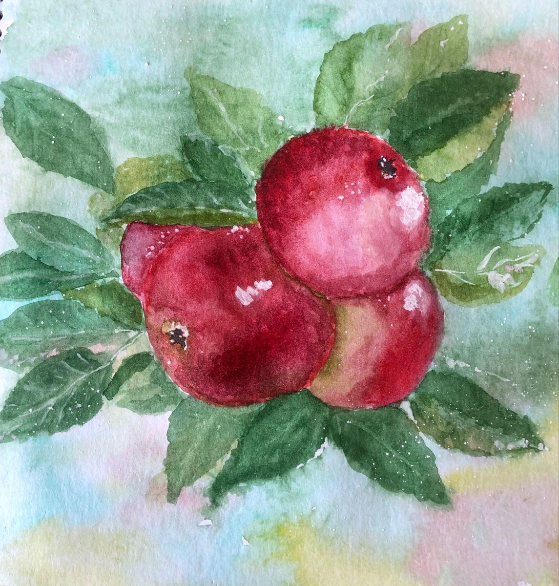Apples #apple #watercolor #watercolorpainting #watercolorsketch #watercolorillustration #art #illustration #акварель #акварельныйрисунок