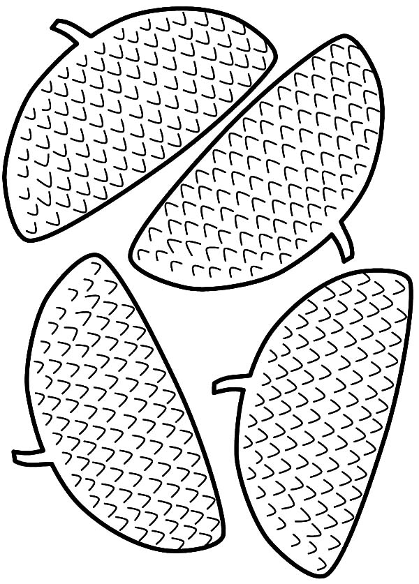 Acorn Head Coloring Pages : Coloring Sky | Coloring pages ...