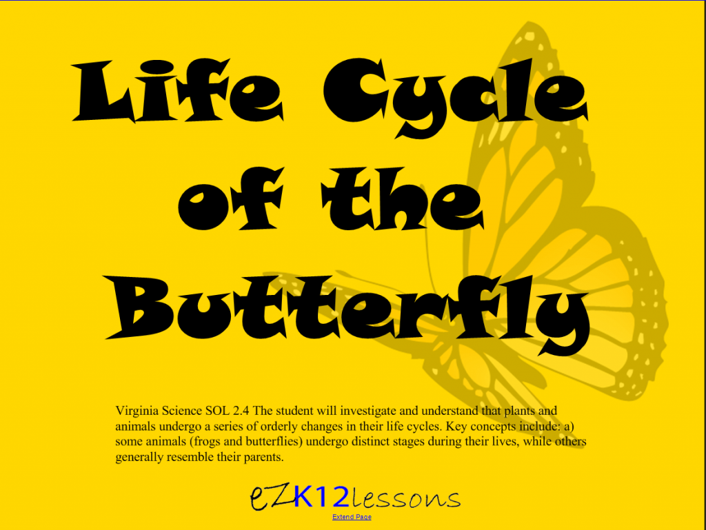 Ezk12lessons life cycle of the butterfly smartboard life cycle of the butterfly urtaz Choice Image