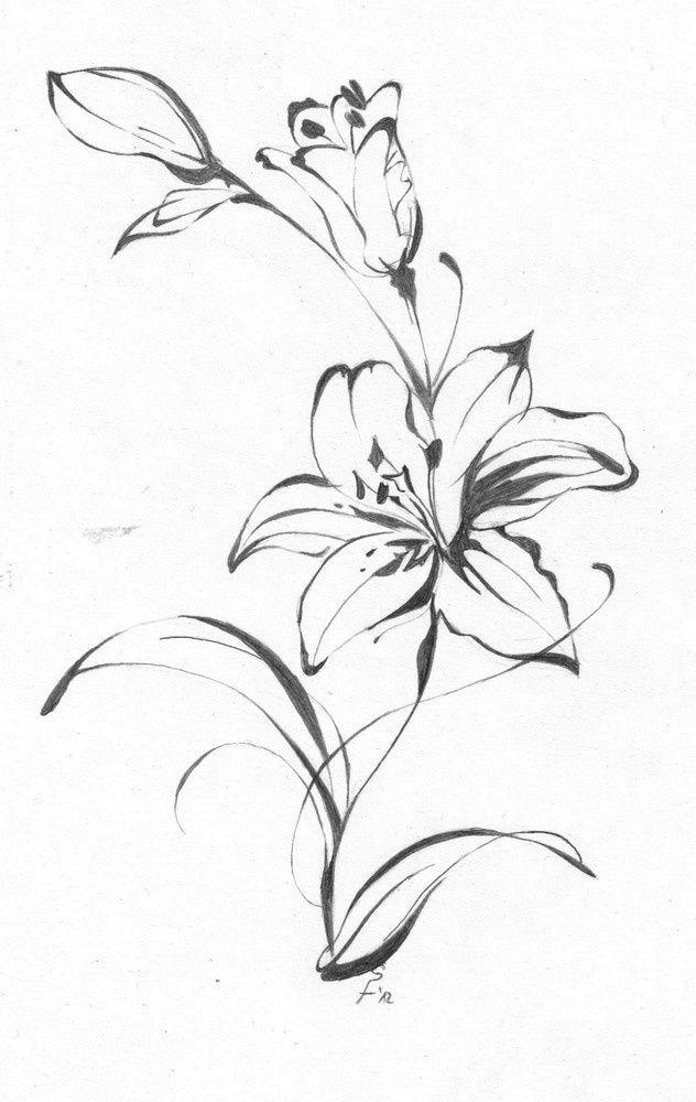 Эскиз тату лилии чернобелый вариант Цветок лилия