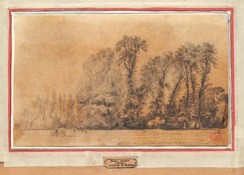 Paul Huet 1803 1869 Lisiere D Ormes Crayon Noir Sur Papier