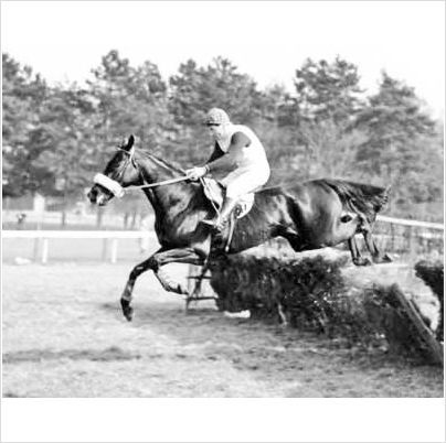 Black Horse with Fred Winter - Ref: 181-05 - A4 size