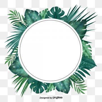 Eucalyptus Leaf Frame Border Design Border Clipart Eucalyptus Frame Png And Vector With Transparent Background For Free Download Frame Border Design Border Design Wedding Logo Design