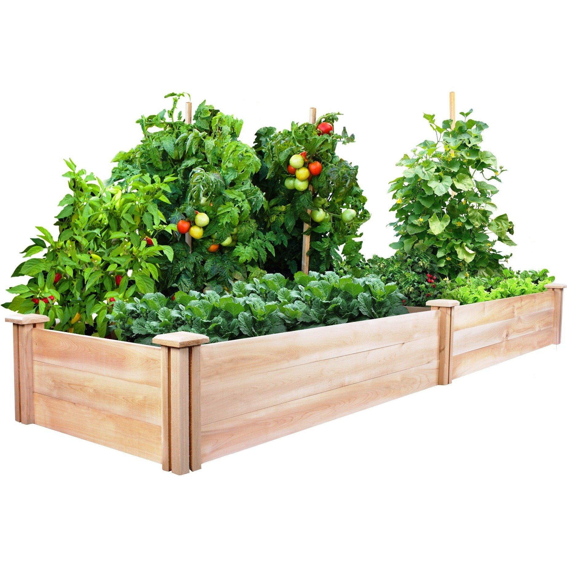 2ed0bafb287d51702ec32ebdf7d991ee - Greenland Gardener Cedar Garden Bed Kit