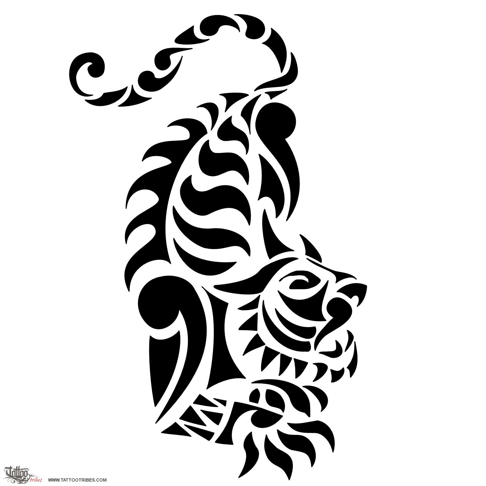Tiger the tiger represents strength and beauty and has always been tiger the tiger represents strength and beauty and has always been regarded with awe by symbol tattoostattoo biocorpaavc Images