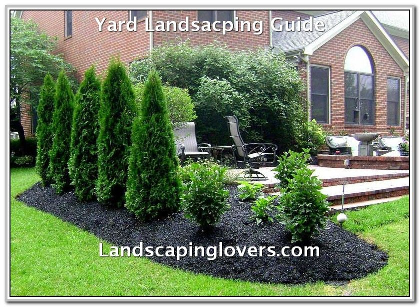 How To Make The Most Out Of Your Landscape Privacy Landscaping