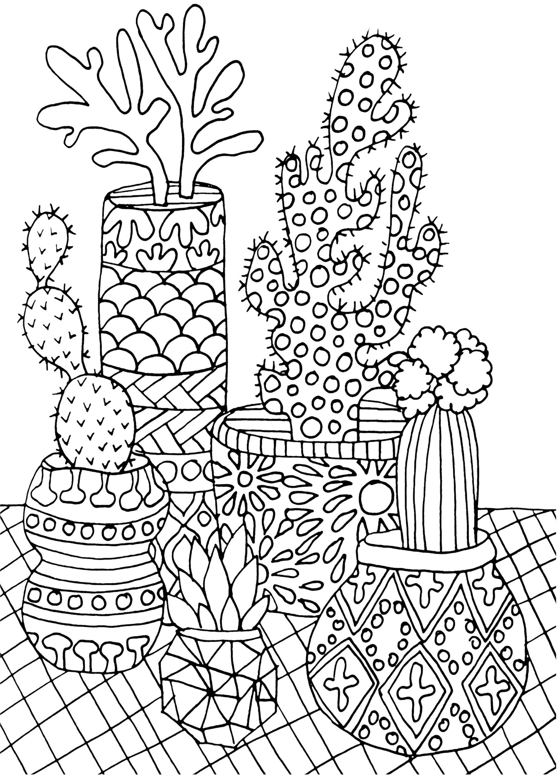 AmazonSmile: Succulents Portable Adult Coloring Book (31 stress ...