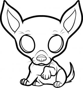 How To Draw A Chihuahua Puppy Chihuahua Puppy Step 6 Dog Coloring Page Chihuahua Drawing Puppy Coloring Pages
