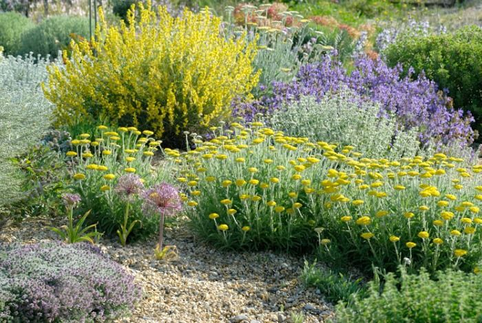 Dise ar un jardin mediterraneo seco casa dise o for Diseno de jardin seco