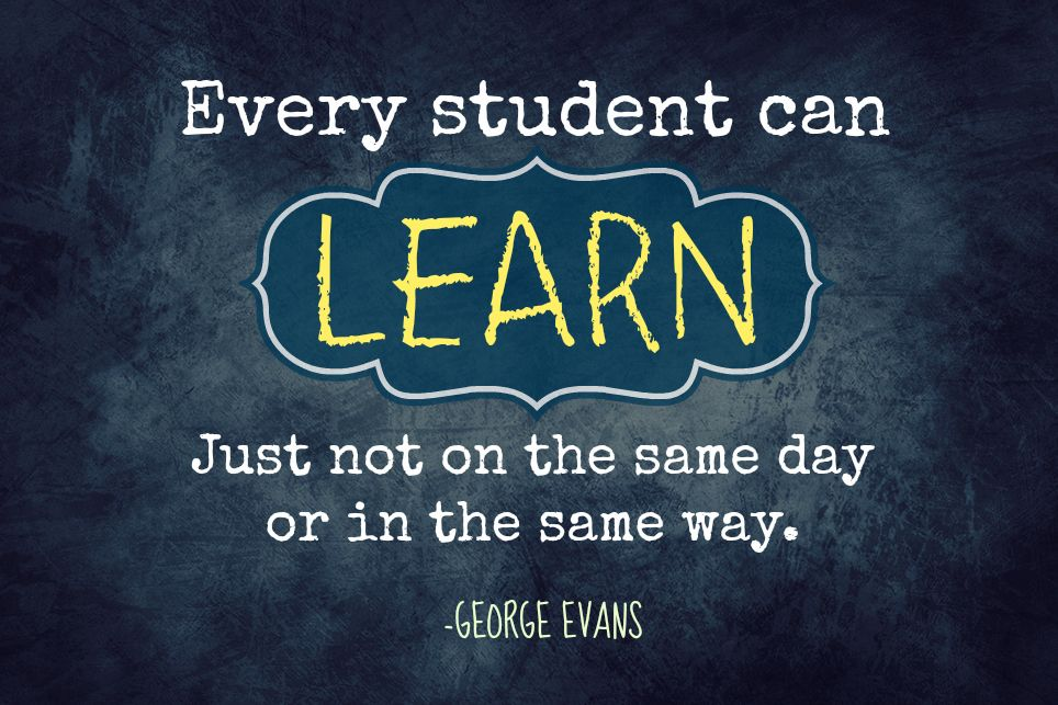 Every student can learn just not on the same day or in the same way. -- George Evans