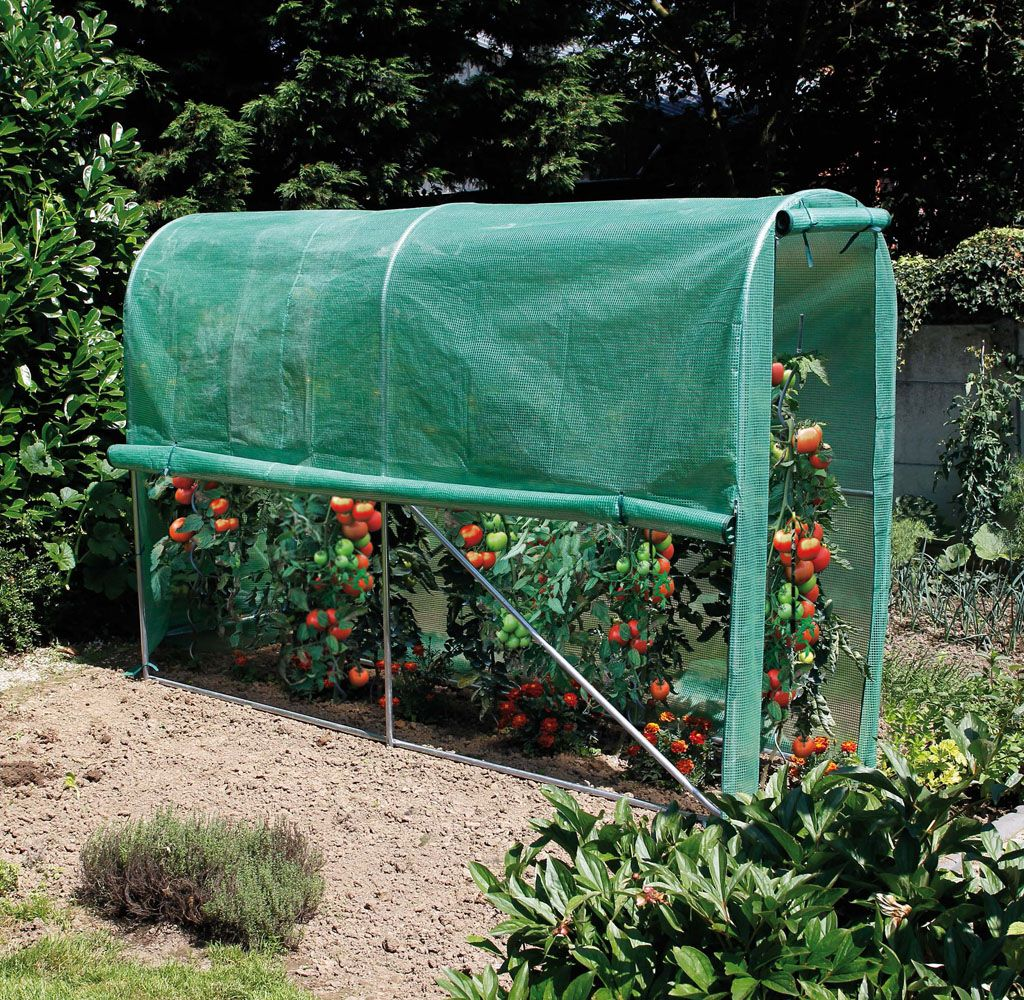 nortene tomato greenhouse serre tunnel pour potager. Black Bedroom Furniture Sets. Home Design Ideas