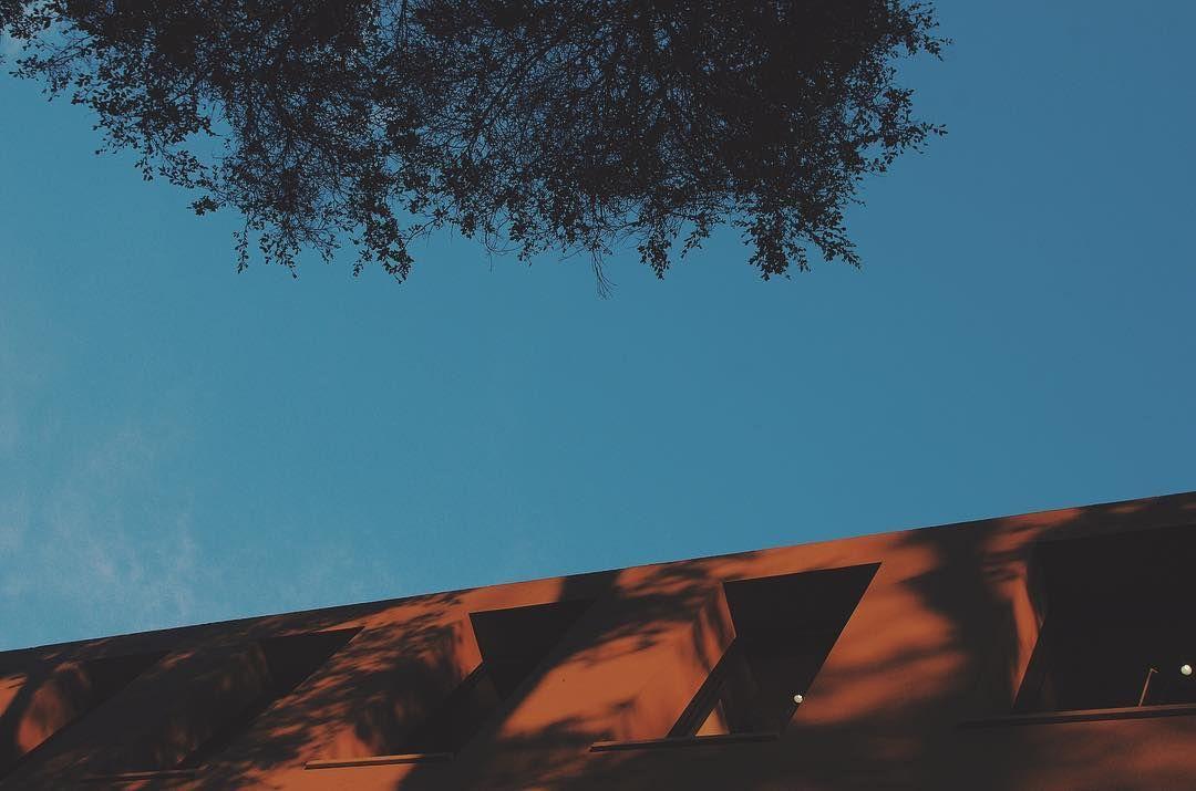 a veces lo mejor de la vida lo tienes al lado y ni cuenta te has dado #shadows #street #nature #discover #natureonly #naturephotography #trees #sky #skyporn #naturelovers #reflejos #sombras #create #explore #lima #peru #travel #minimalism #streetphotography #streetstyle #outside #sunday #quotes #quoteoftheday #pictureoftheday
