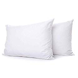 The 10 Best Pillows For Stomach Sleepers Reviews Guide For 2019 Best Down Pillows Stomach Sleeper Feather Pillows