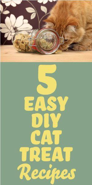 5 Easy Diy Cat Treat Recipes Diy Cat Treats Recipes Diy Cat Treats Cat Snacks