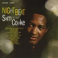 Sam Cooke Night Beat 45rpm 180g Lp Vinyl Record Album Dutch Vinyl Record Store