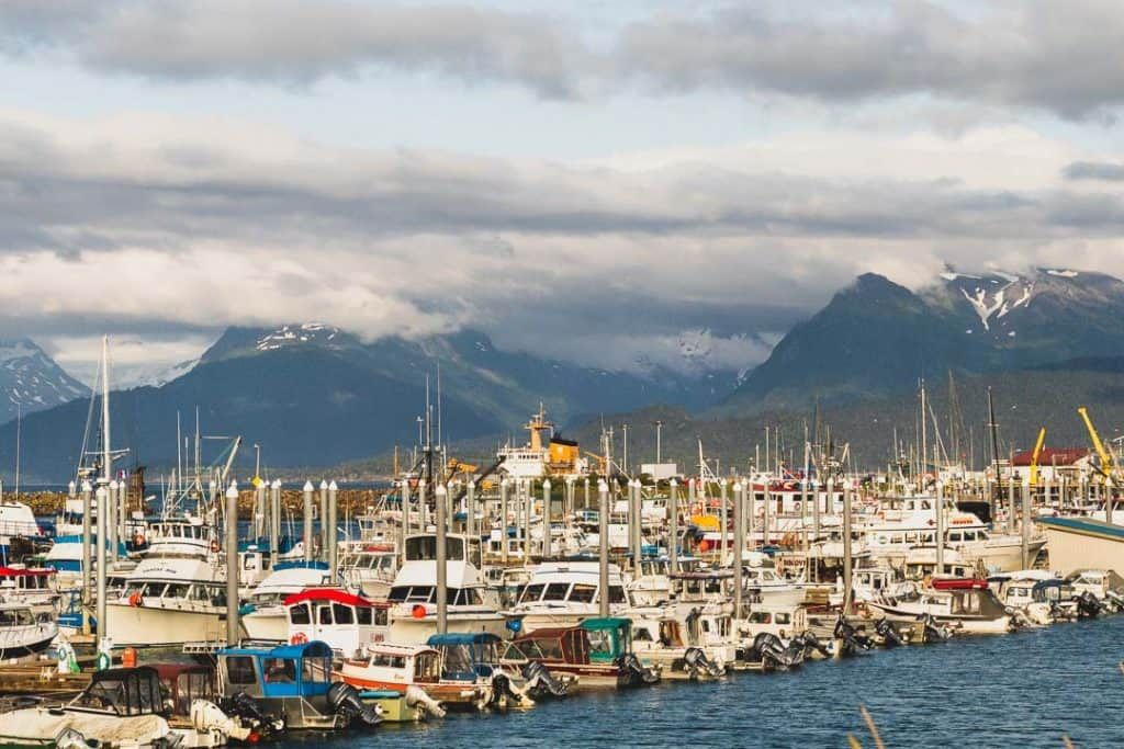 13 of the best mostly free things to do in homer alaska