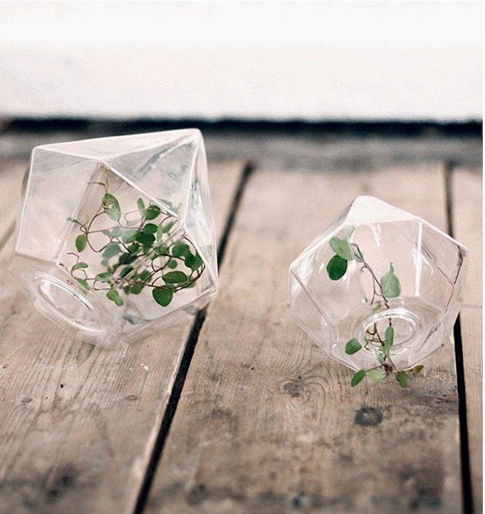 Trendikkäimmät huonekasvit: 3. Terraariot, ylösalaisinruukut ja ilmakasvit