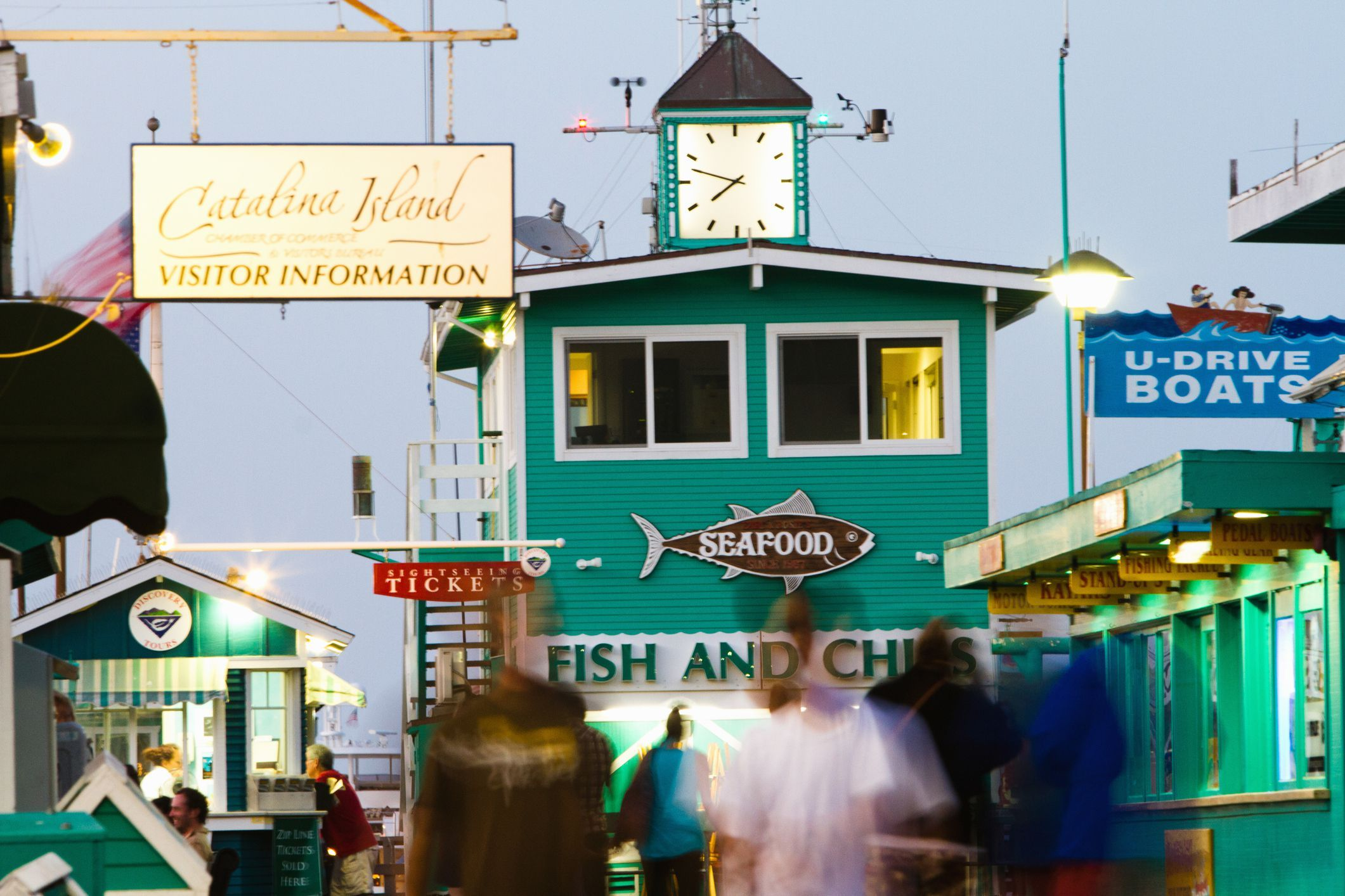 Things to Do with Kids on Catalina Island Kid friendly
