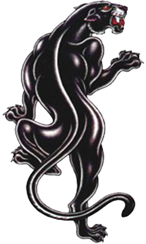 black panther tattoos designs panther tattoos designs 14 panther tatoos pinterest. Black Bedroom Furniture Sets. Home Design Ideas