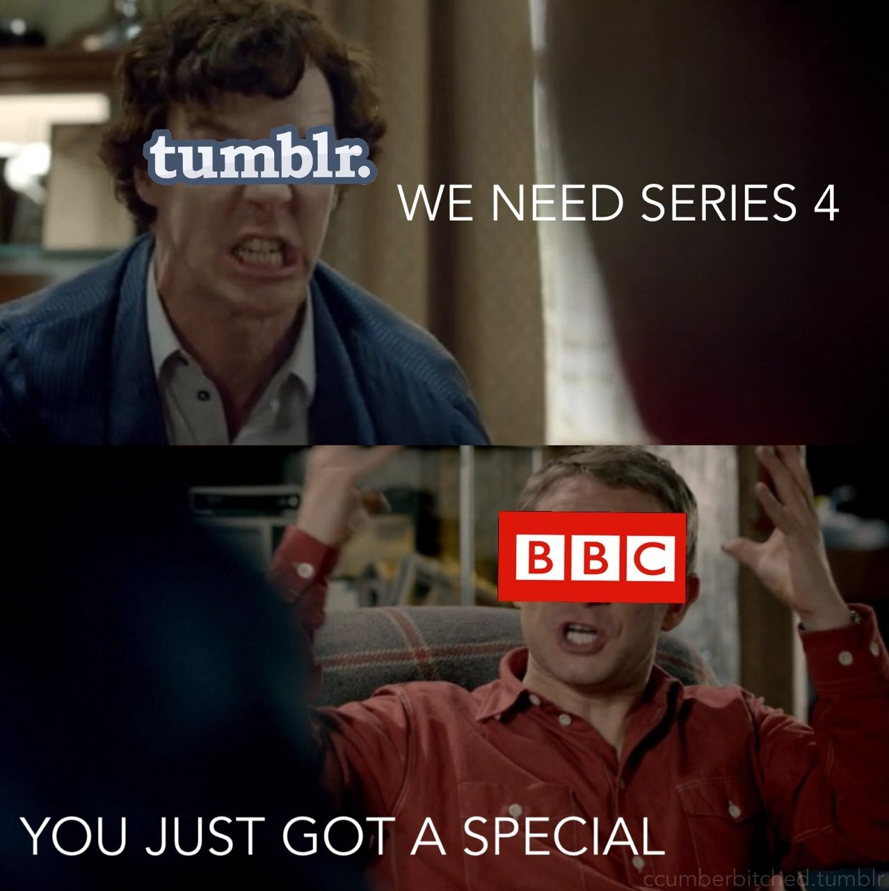 a new updated version of the entire sherlock fandom right now ...