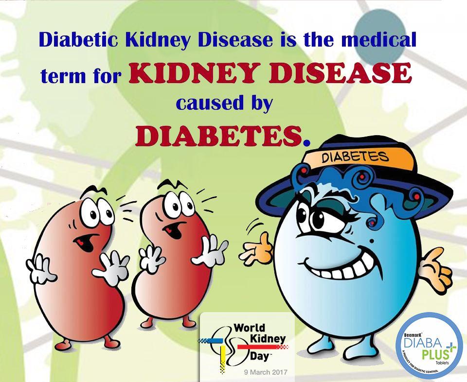 Diabetic kidney disease is medical term for