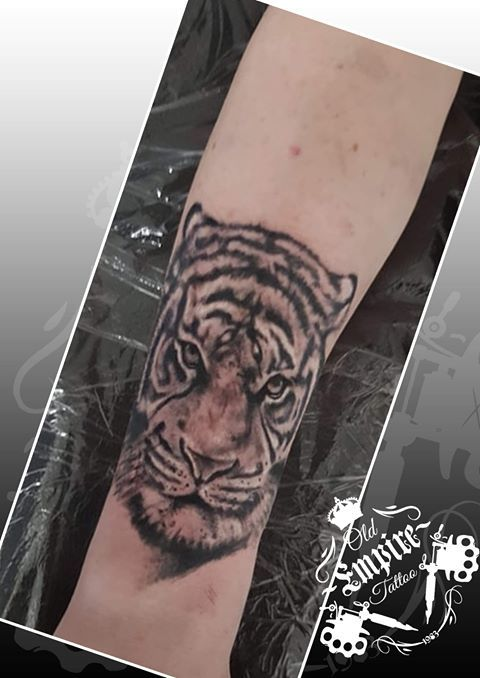 Today again was a walk on the wild side. We just love doing the animal tatts 👌😎 🐅 cool start of an awesome unique sleeve on @cal hosey  @oldempiretattoo #tiger #wild #animal #animaltattoo #tatts #cool #tattoo #tattooideas #inkedguys @dynamiccolor @fkirons @allegoryink @bnginksociety @inkedmag