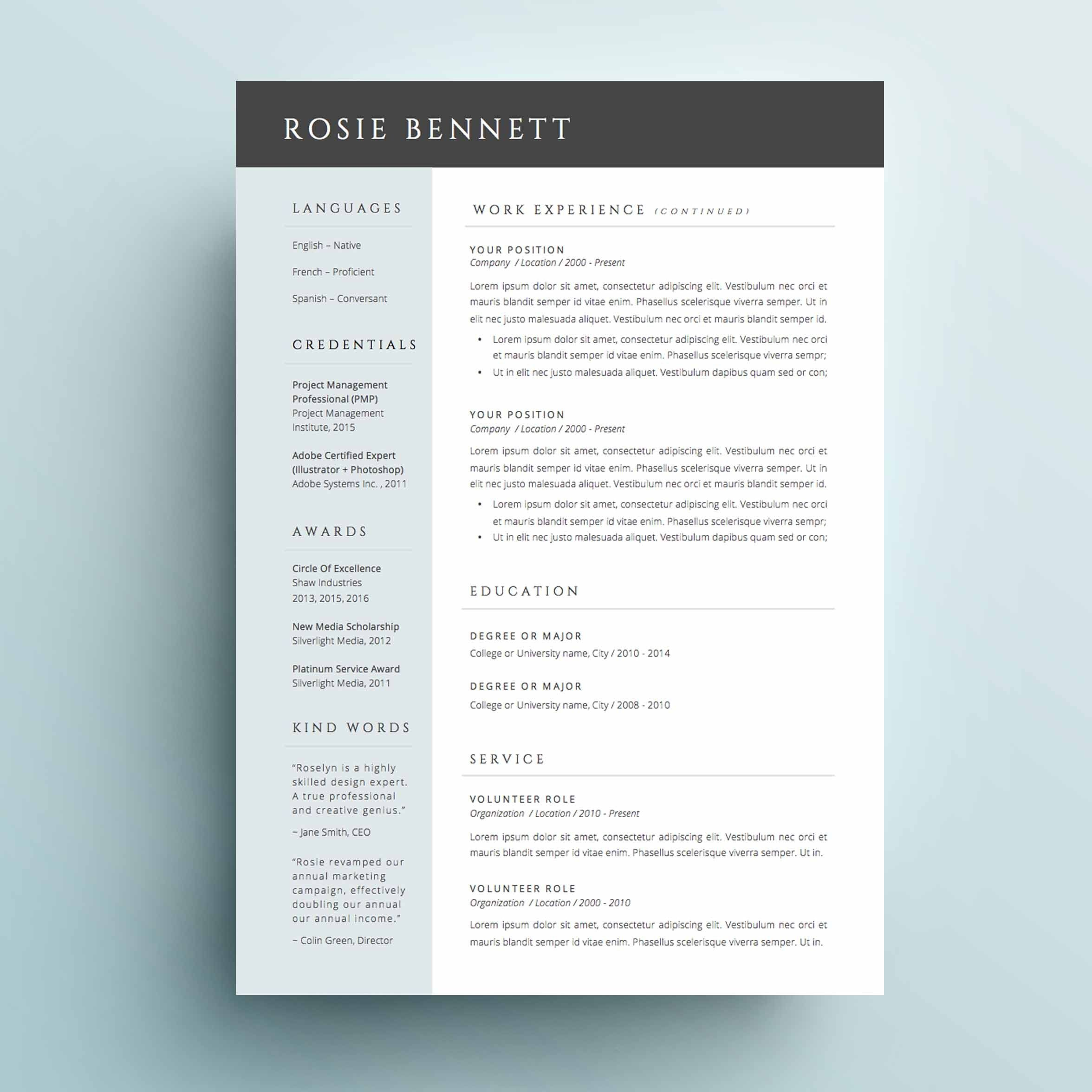 Header For 2 Page Resume Best Selling Ms Office Word Cv Template